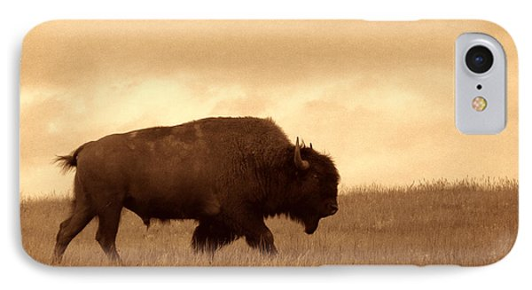 Lone Bison  IPhone Case by American West Legend By Olivier Le Queinec
