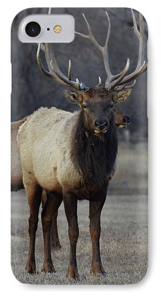 Lone Bull IPhone Case by Billie Colson