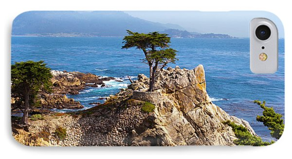 Lone Cypress IPhone Case by Lou Ford