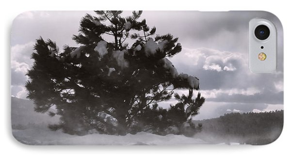 Lone Pine IPhone Case by Becky Titus
