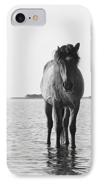 Lone Stallion IPhone Case by Bob Decker