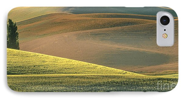 Lone Tree In The Palouse  IPhone Case by Sandra Bronstein