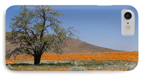 Lone Tree In The Poppies Phone Case by Sandra Bronstein