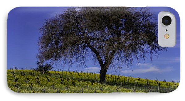 Lone Tree In Vineyard IPhone Case by Garry Gay
