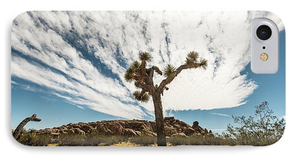Lonely Joshua Tree IPhone Case by Amyn Nasser