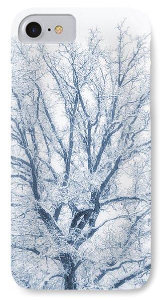 lonely Oak tree in snowy, misty landscape IPhone Case by Christian Lagereek
