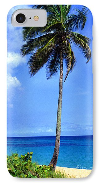 Lonely Palm Tree Los Tubos Beach Phone Case by Thomas R Fletcher
