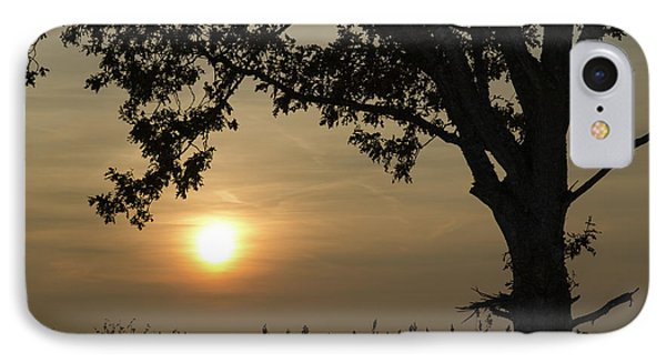 Lonely Tree At Sunset IPhone Case by Kennerth and Birgitta Kullman