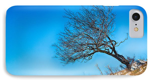 Lonely Tree Blue Sky IPhone Case by Jivko Nakev