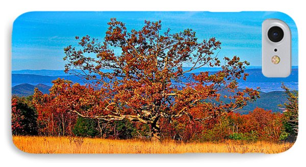 Lonely Tree Skyline Drive Va IPhone Case by The American Shutterbug Society