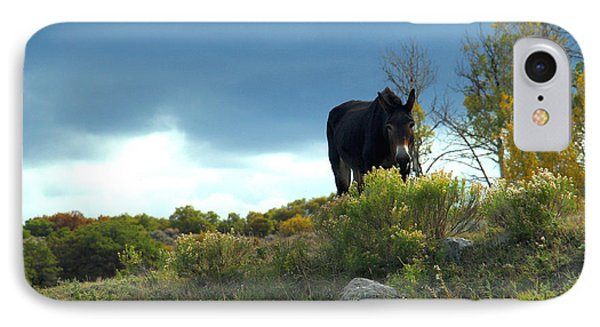 Lonesome Donkey IPhone Case