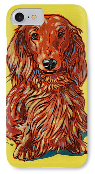 Long Haired Dachshund IPhone Case