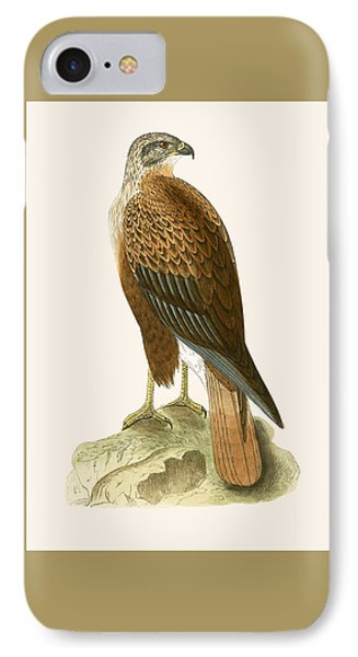 Long Legged Buzzard IPhone Case by English School