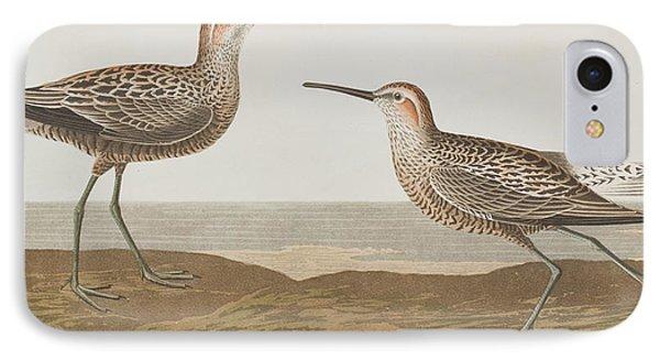 Long-legged Sandpiper IPhone Case by John James Audubon