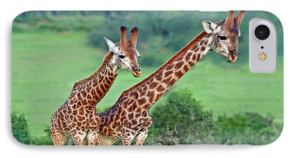Long Necks Together Phone Case by Bruce Iorio
