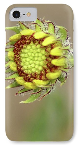IPhone Case featuring the photograph Long Stemmed Beauty by Ben Upham III