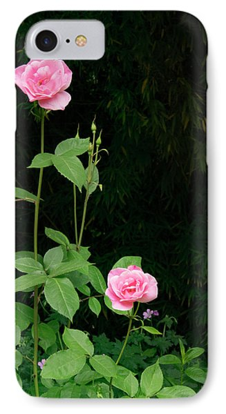 IPhone Case featuring the photograph Long Stemmed Rose by Jean Noren