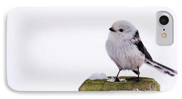 IPhone Case featuring the photograph Long-tailed Tit On The Pole by Torbjorn Swenelius