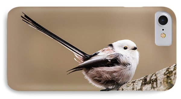Long-tailed Tit Wag The Tail IPhone Case by Torbjorn Swenelius