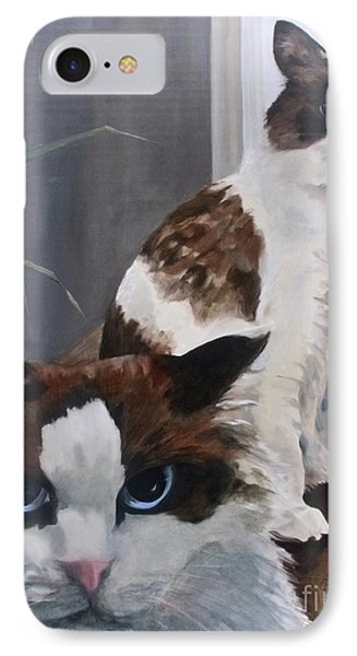 Look Who Is Grumpy Now IPhone Case by Diane Daigle
