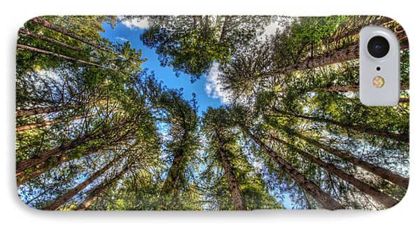 Looking Up At Muir Woods Forest Redwood Trees IPhone Case