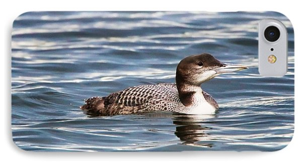 Loon  9509 IPhone Case by Jack Schultz