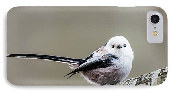 IPhone Case featuring the photograph Loong Tailed by Torbjorn Swenelius
