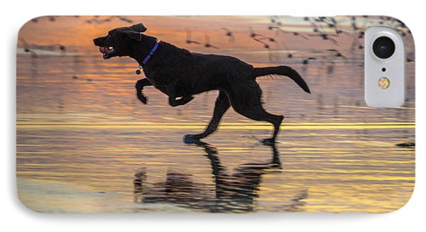 Loping Dog IPhone Case by Jerry Cahill