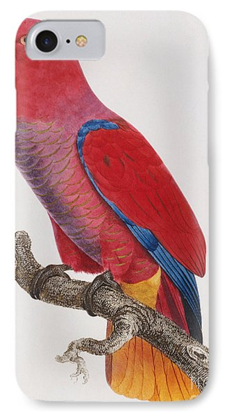 Lorikeet IPhone Case by Jacques Barraband