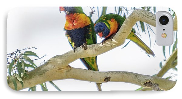 IPhone Case featuring the photograph Lorrikeets 01 by Werner Padarin