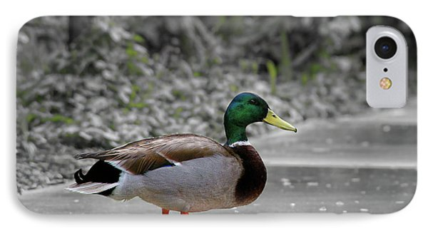 IPhone Case featuring the photograph Lost Duck by Mariola Bitner