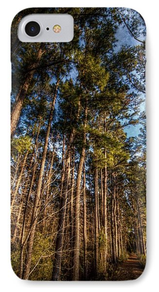 Lost In The Woods IPhone Case by Linda Unger