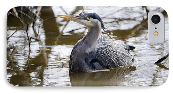 IPhone Case featuring the photograph Lost Lagoon Great Blue Heron 2 by Terry Elniski