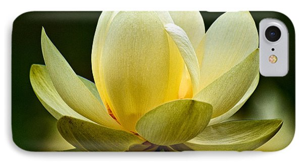 Lotus Blossom Phone Case by Christopher Holmes