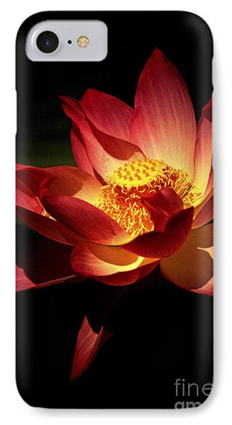 Lotus Blossom IPhone Case by Paul W Faust -  Impressions of Light