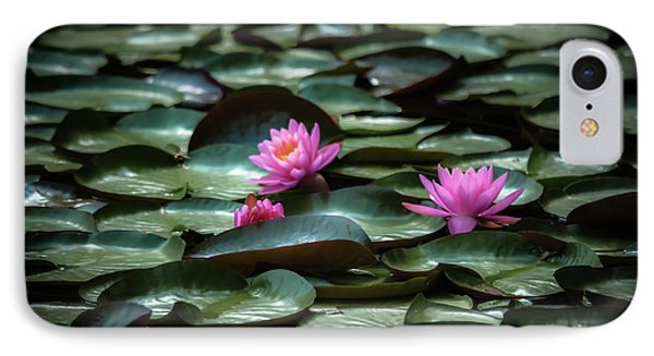 IPhone Case featuring the photograph Lotus by Brenda Bostic