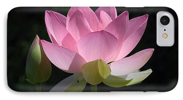 Lotus Bud--snuggle Bud Dl005 IPhone Case by Gerry Gantt