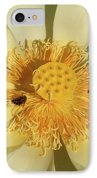 Lotus Flower IPhone Case by Carolyn Dalessandro