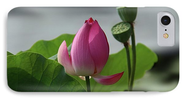 Lotus Flower In Pure Magenta IPhone Case by Yvonne Wright