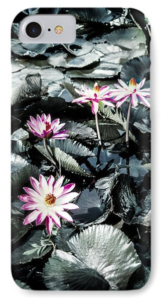IPhone Case featuring the photograph Lotus Flowers by Randy Sylvia