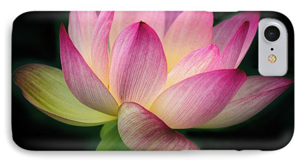 Lotus In The Limelight IPhone Case by Jessica Jenney
