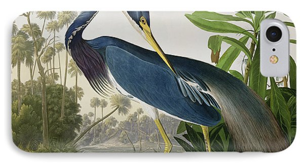 Louisiana Heron IPhone Case by John James Audubon