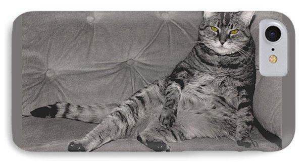 Lounge Cat Phone Case by Joy McKenzie