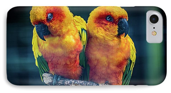IPhone Case featuring the photograph Love Birds by Chris Lord