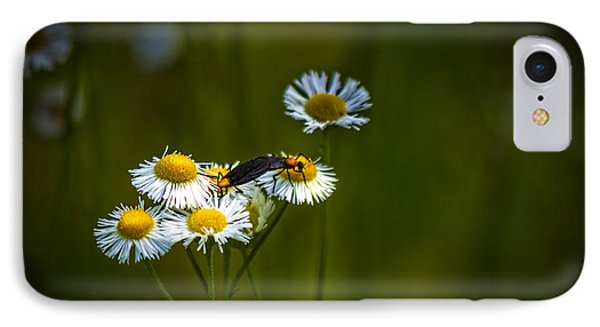 Love Bugs IPhone Case by Marvin Spates