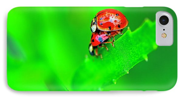 IPhone Case featuring the photograph Love Bugs by Sharon Talson