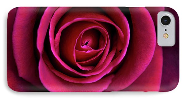 IPhone Case featuring the photograph Love Is A Rose by Linda Lees