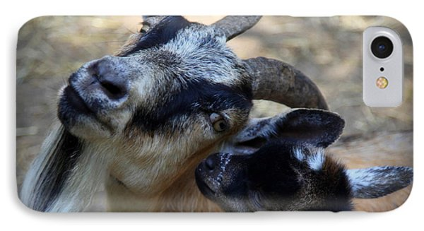 Love On A Farm Phone Case by Karen Wiles