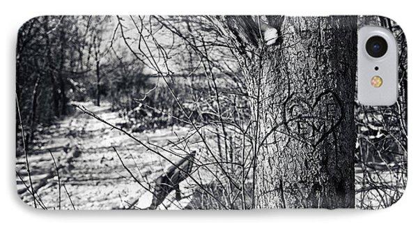 Love On A Tree IPhone Case by CJ Schmit