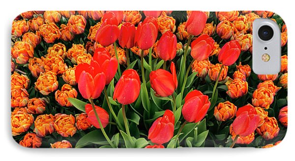 Lovely Bunch Of Tulips IPhone Case by Jean Noren